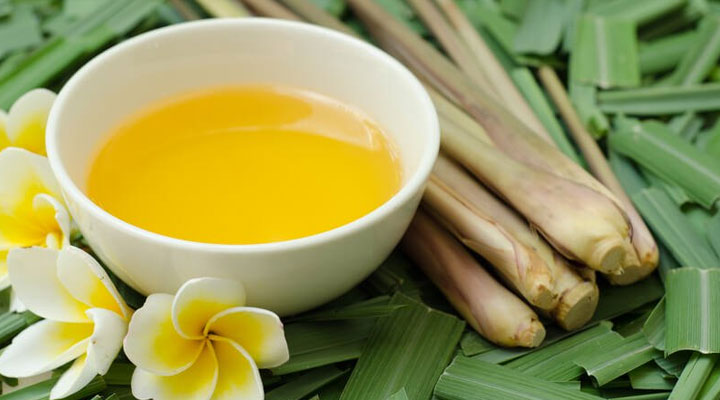 herbal oil Citronella Oil for scalp infections treatment